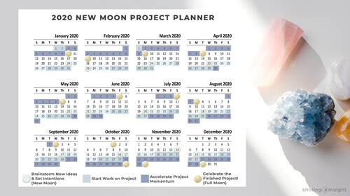 2020 New Moon Project Planner by Shining Insight